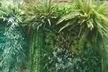 jardim-vertical-samambaia