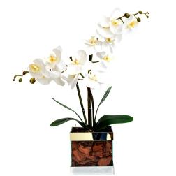 Flores para os mais românticos - Formosinha Decorações