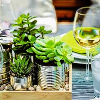 decoracao-plantas-suculentas-004